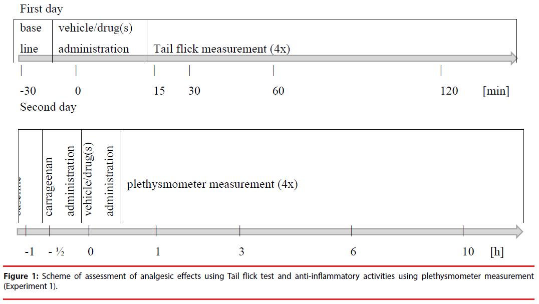 neuropsychiatry-Scheme-assessment
