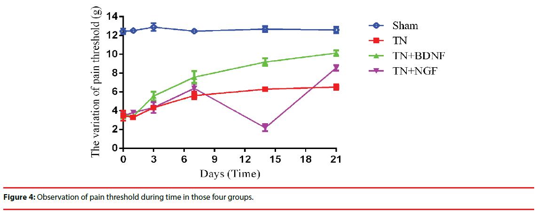 neuropsychiatry-pain-threshold