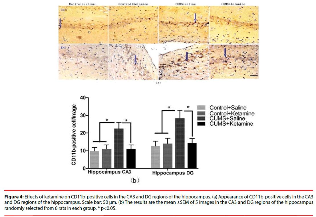 neuropsychiatry-positive-cells