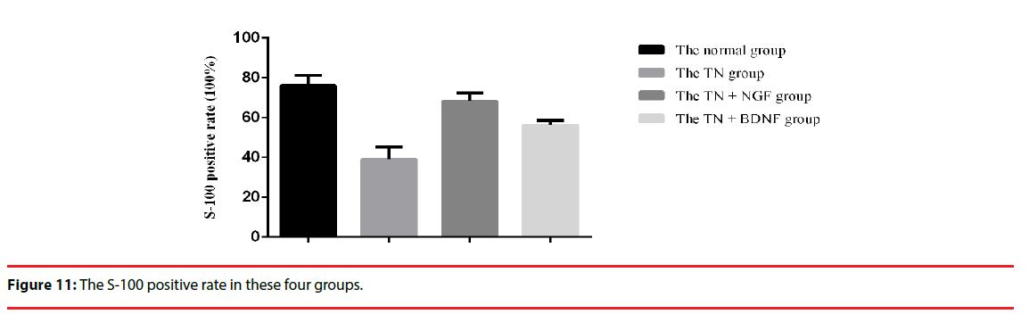 neuropsychiatry-positive-rate